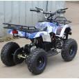 Электроквадроцикл Мини Барс 800 ВДВ