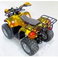 Электроквадроцикл Ровер 1000XL Cаламандра